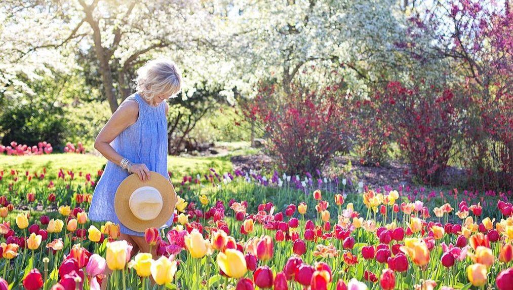 A woman walking through a flowerbed.